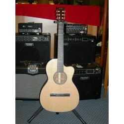 000C-NYLON chitarra classica elettrificata Martin & Co