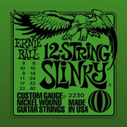 2230 12 String Slinky muta elettrica Ernie Ball