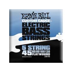 2810 5 String Flatwound muta per basso Ernie Ball
