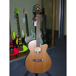 AEG15II-LG chitarra acustica elettrificata Ibanez