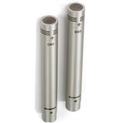 C02 coppia microfoni a condensatore supercardioidi pencil Samson
