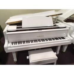 G2 pianoforte a coda pari al nuovo bianco Yamaha