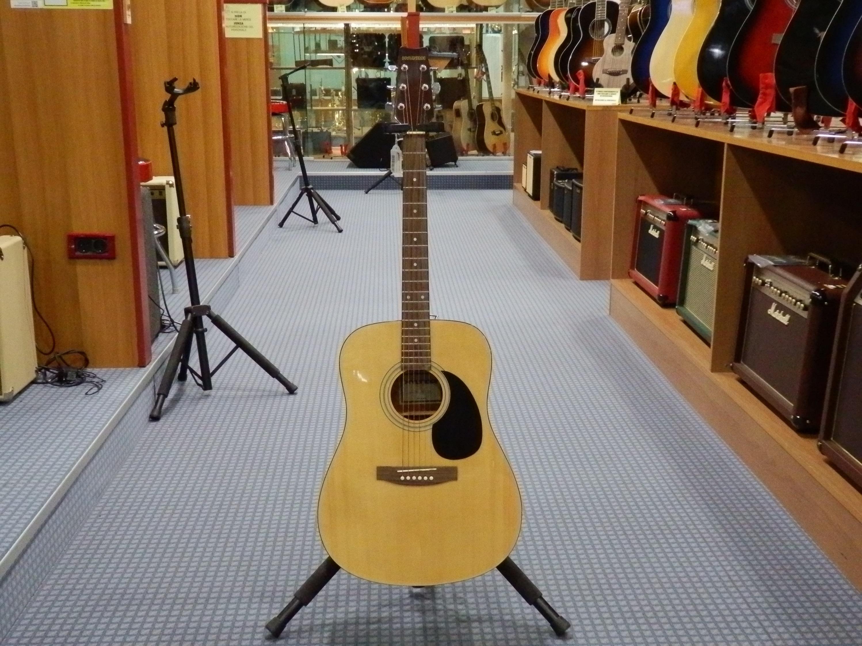 Hsd 300 chitarra acustica hyundai strumenti musicali marino baldacci