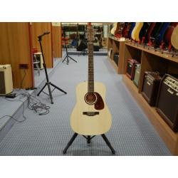 B20 Encore chitarra acustica Norman