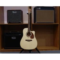 B20 Encore CW chitarra acustica elettrificata Norman
