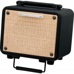 T15 combo per chitarra acustica Ibanez