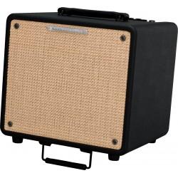 Ibanez T80N combo chitarra acustica