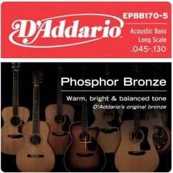 D'Addario EPBB170-5 in bronzo fosforoso per basso acustico 5 corde 45-130 Long Scale