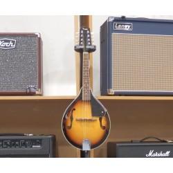 FM-101 Mandolino Fender
