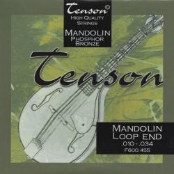 Tenson Phosphor Bronze muta per mandolino