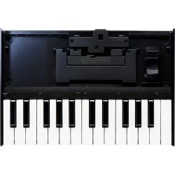 Roland K-25M tastiera dinamica a 25 tasti