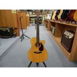 GPC-18E chitarra acustica elettrificata Martin & Co.