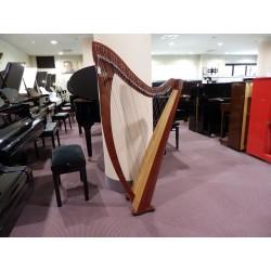 Arpa usata modello Titan Salvi Harps