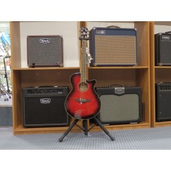 AEG24II-THS chitarra acustica elettrificata Ibanez