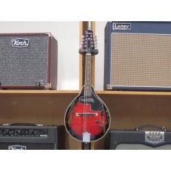 Mandolino elettrificato Folk Tension A-1E Black Cherry Tenson