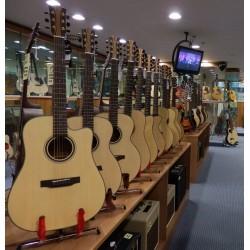 P-2-28G-EQ Parlor chitarra acustica elettrificata Effedot