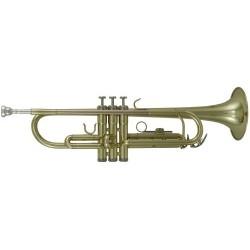 Roy Benson Tromba in Sib TR-101 Serie Student