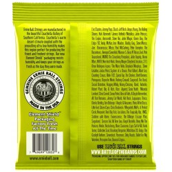 Ernie Ball 2832 Nickel Wound Regular