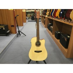 Ibanez PF10CE-OPN Open Pore Natural